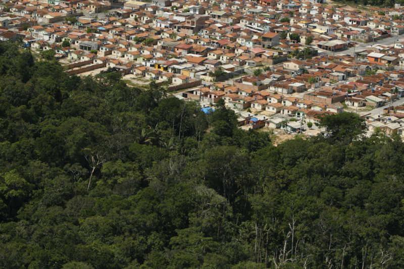 Vista aérea da extrema zona norte de Manaus coma floresta do MUSA (Foto: Alberto César Araújo/Amazônia Real)