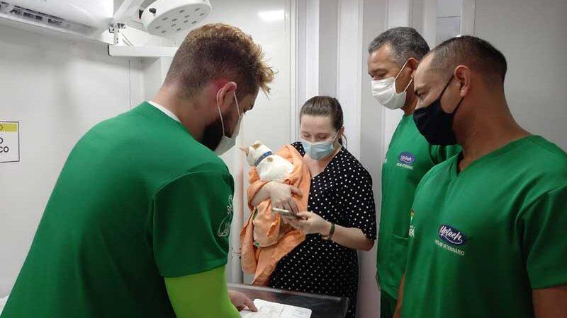 Castramóvel iniciou exames pré-operatórios em animais — Foto: Rafaela Bittencourt/Rede Amazônica