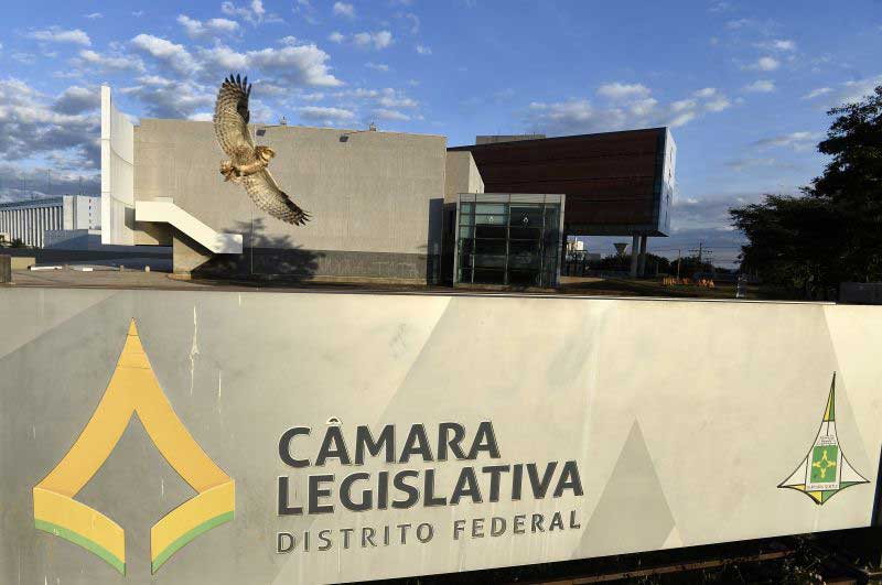 CPI que investiga maus-tratos contra animais no DF define plano de trabalho