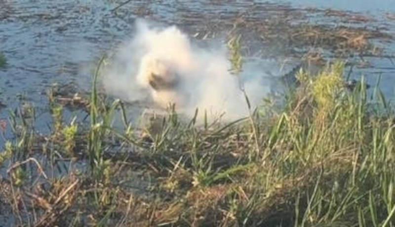 Crocodilo come um drone que estava tentando filmá-lo e ele explode na sua boca