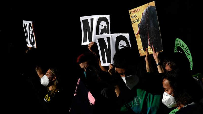 Pessoas seguram cartazes pedindo a abolição das touradas na Espanha.