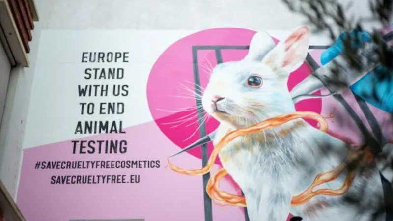 Europa cada vez mais próxima da proibição de testes em animais