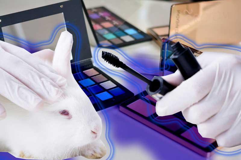 Testes de cosméticos em animais ainda acontecem, apesar das proibições