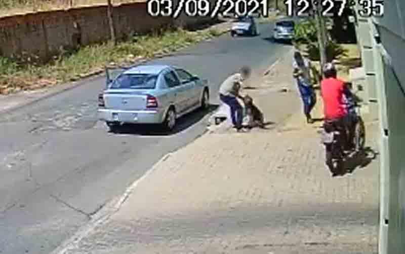 Homem espanca cachorro em rua de Aparecida de Goiânia, Goiás — Foto: Reprodução/Rede social