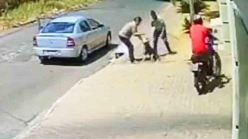 Polícia resgata cadela que foi espancada por homem em calçada de Aparecida de Goiânia, GO