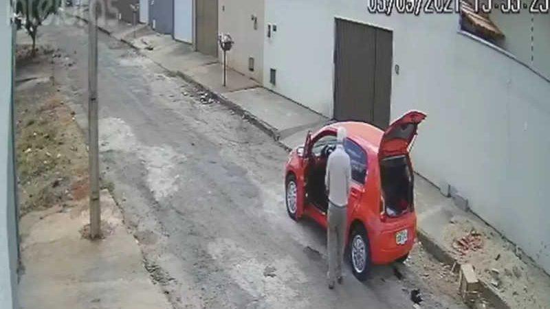 Vídeo mostra homem abandonando gatos no meio de rua em Inhumas, Goiás — Foto: Reprodução/TV Anhanguera