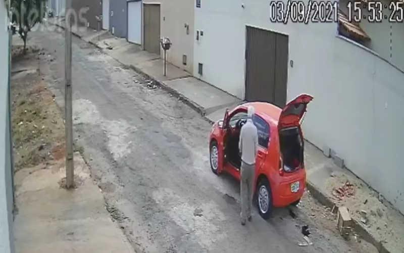 Homem abandona filhotes de gato no meio de rua em Inhumas, GO; vídeo