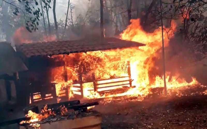 Galinheiro ficou completamente destruído pelo fogo; 35 aves morreram queimadas em Jataí, Goiás — Foto: Arquivo pessoal/Wanderson Ferreira