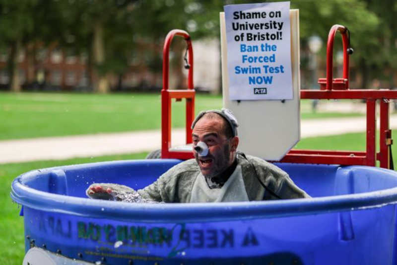 'Homem-rato' é visto se debatendo em tanque de água durante protesto contra testes em animais da Universidade de Bristol