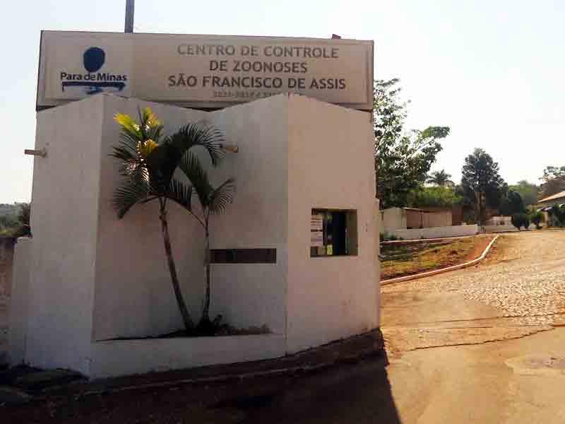 Populares denunciam maus-tratos aos animais que chegam ao CCZ de Pará de Minas, MG