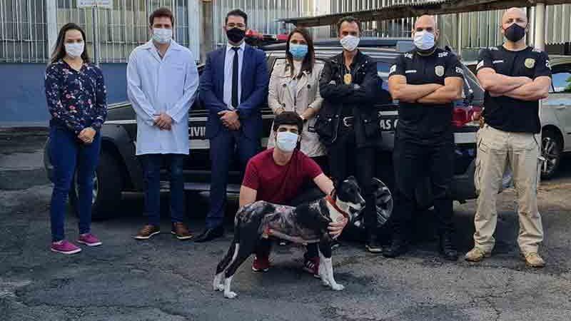 Cachorro foi adotado por estudante de veterinária e recebeu o nome de Coronel em Poços de Caldas (MG) — Foto: Divulgação/Polícia Civil