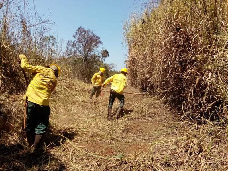 Trabalhos de limpeza de área do Cras pretende evitar incêndios — Foto: Ibama/Divulgação