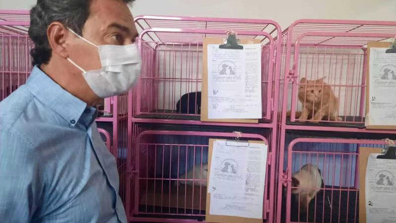 Prefeito, Marcos Trad (PSD), em clínica credenciada para castrar 600 cães e gatos, por mês, durante um ano. (Foto: Caroline Maldonado)