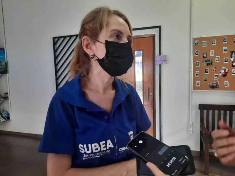 Titular da Subea, Ana Cristina Camargo da Costa. (Foto: Caroline Maldonado)