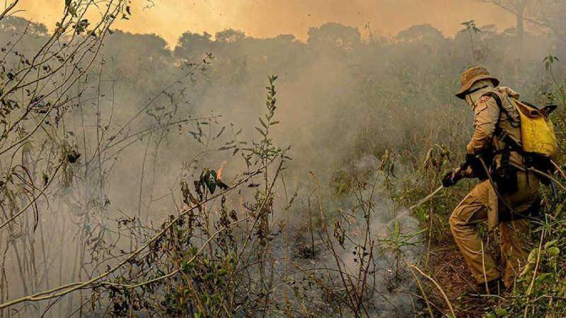 Imagens dos incêndios no Pantanal registradas em 2020