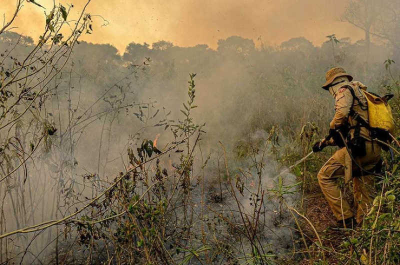 'Pantanal está destruído', dizem ONGs ao pedirem celeridade em ação que exige políticas públicas contra incêndios