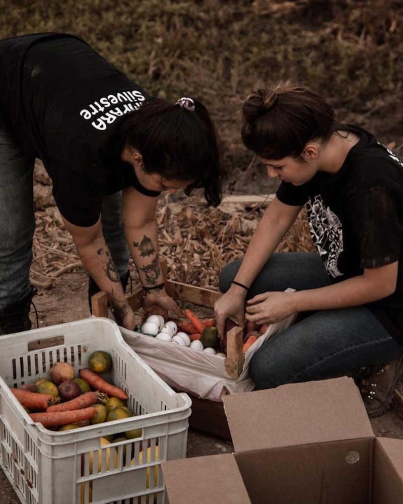 Associação arrecada frutas e ovos para animais que estão sofrendo com as queimadas e a seca no Pantanal de MT