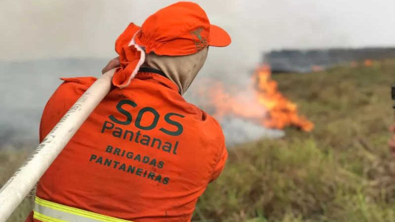 Incêndio atinge o Parque Estadual Encontro das Águas, localizado na região de Porto Jofre, na cidade de Poconé, no Pantanal mato-grossense — Foto: Gustavo Figueirôa/SOS Pantanal