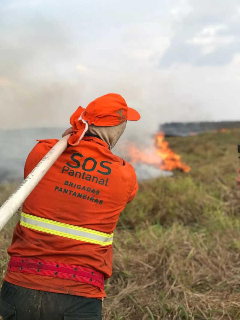 Incêndio atinge pelo 2° ano maior refúgio de onças-pintadas do mundo em MT