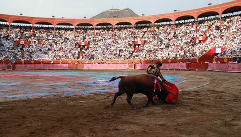 Tribunal proíbe treinamento de toureiros infantis no Peru