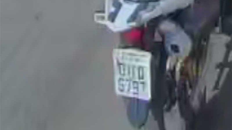 Filhote de cão é arremessado de moto em saco em Teresina, PI; polícia investiga