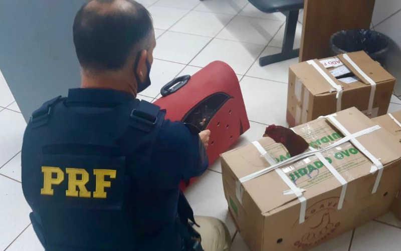 Prefeito de cidade do Paraná é preso transportando galos de rinha pela 2ª vez este ano no RS
