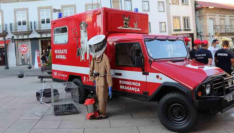 Bombeiros transformam ambulância antiga em veículo de resgate de animais em Bragança, Portugal