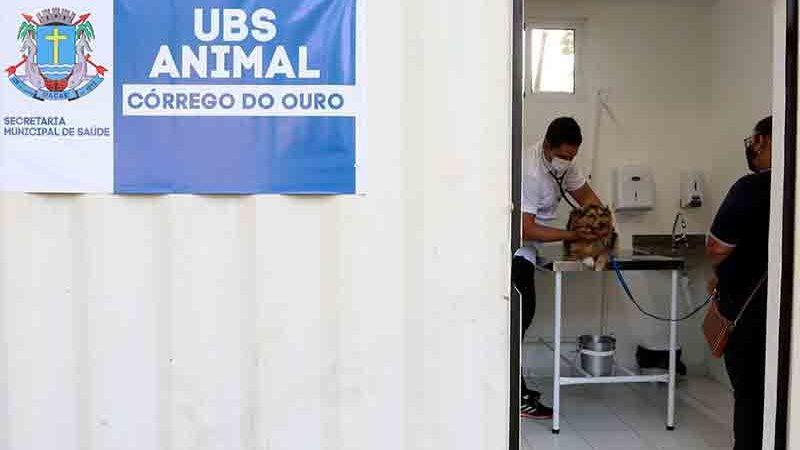 Macaé, RJ, sanciona lei de atendimento veterinário gratuito — Foto: Divulgação/Prefeitura de Macaé