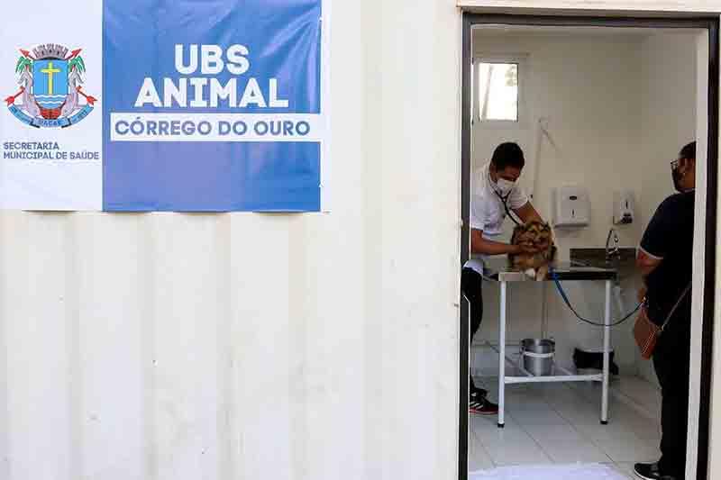 Prefeitura de Macaé, RJ, sanciona lei de atendimento veterinário gratuito