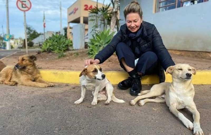 Desaparecimento de cães do pátio da Prefeitura vira caso de polícia em Capela de Santana, RS
