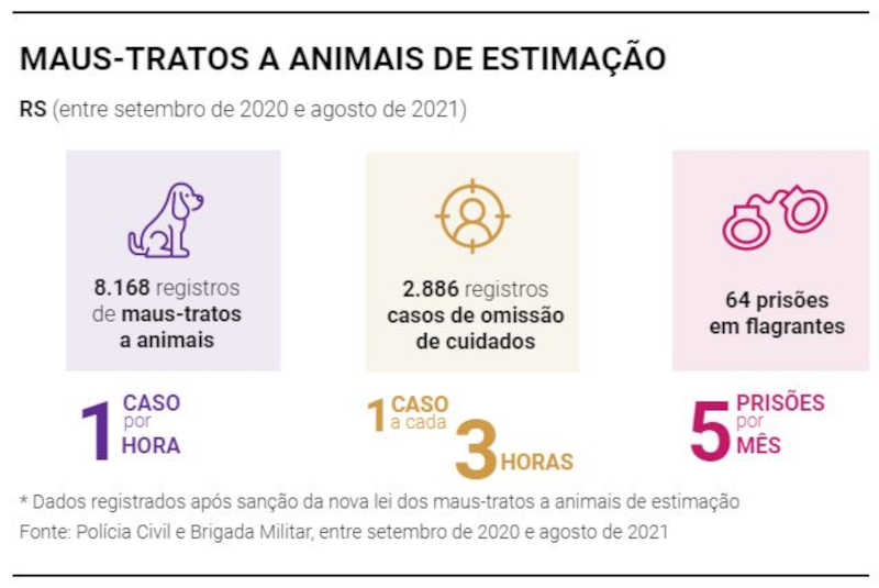 Lei dos maus-tratos registra um caso por hora de violência contra animais de estimação no RS