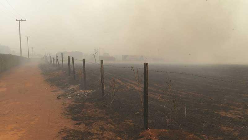 Fogo destrói plantações em Batatais, SP — Foto: Reprodução/EPTV