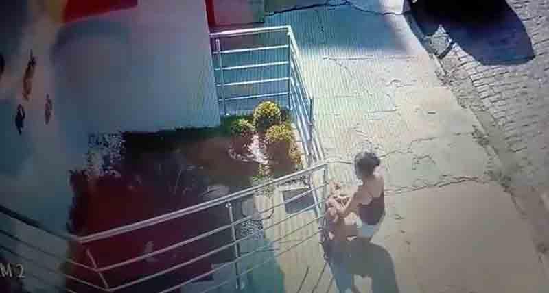 Mulher abandona cachorro no Centro de Campinas, SP; vídeo