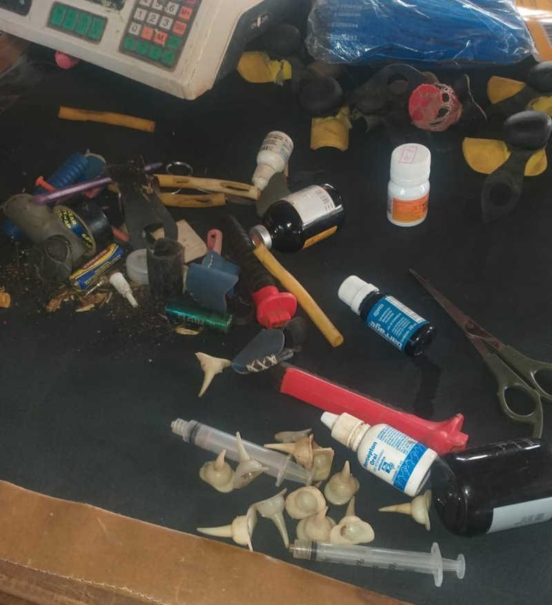Medicamentos e equipamentos foram apreendidos em Nova Aliança — Foto: Divulgação/Polícia Ambiental
