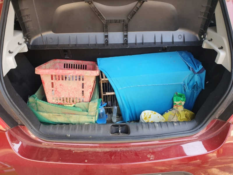 Flagrado pela 4ª vez transportando aves silvestres, homem é multado em mais de R$ 300 mil