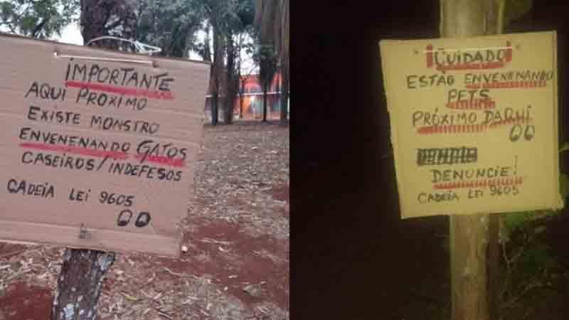 Placas incentivam denúncia contra autor de maus-tratos em Ribeirão Preto (Imagem: Divulgação / Redes sociais)