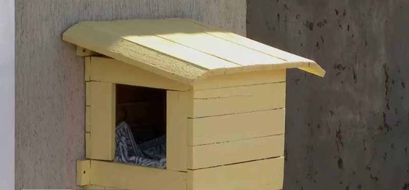 Voluntárias montam casinhas para cães e gatos que vivem nas ruas da região de Ribeirão Preto, SP