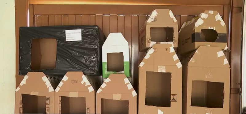 Tosadora de Brodowski, SP, tem dezenas de casinhas de papelão para serem distribuídas — Foto: Reprodução/EPTV