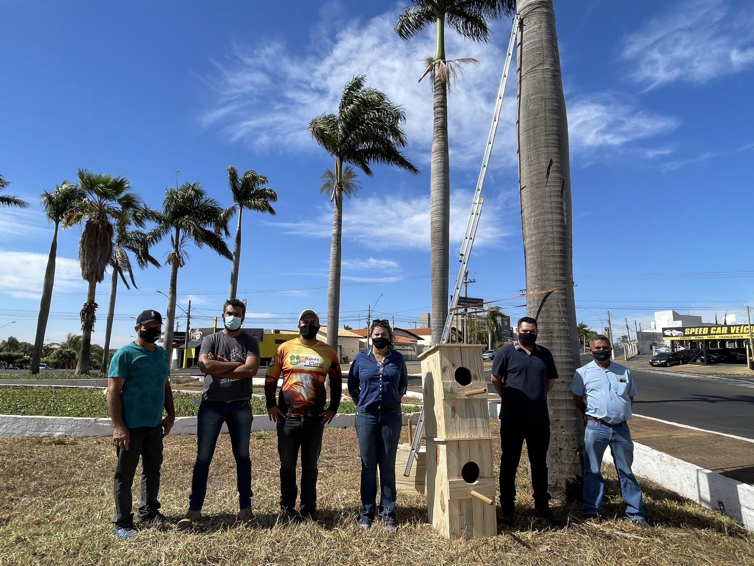 Prefeitura de Jales (SP) instala ninhos artificiais em palmeiras