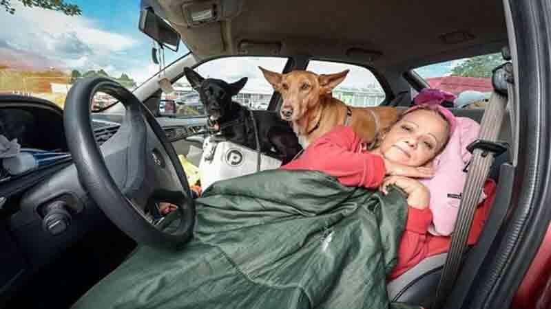Professora de inglês vive em carro para não abandonar cachorros