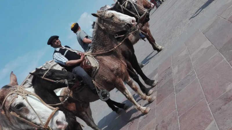 Um gaúcho montado em um cavalo visivelmente deteriorado e exausto, na Peregrinação Gaúcha de 2018.