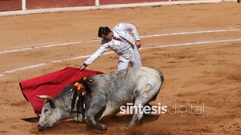 Discussão sobre proibição de touradas e brigas de galo será retomada no México