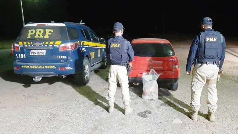 Homem transportando tatus mortos é autuado por crime ambiental em Petrolina, PE