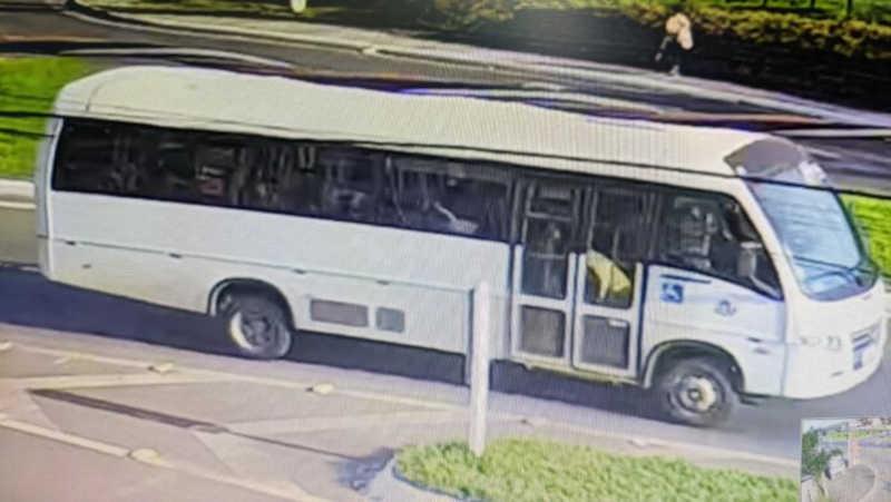 Ônibus da Saúde levou cães comunitários desaparecidos da Prefeitura de Capela, RS; um deles foi encontrado