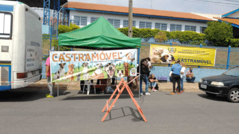 Mais de 190 animais foram atendidos pelo Castramóvel no final de semana em Bragança Paulista, SP