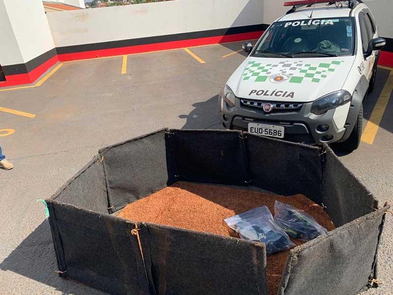 Objetos usados em rinha de galos foram apreendidos em Dolcinópolis (SP) — Foto: Polícia Militar Ambiental/Divulgação